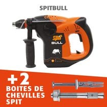 Pack perfo Spitbull + chevilles