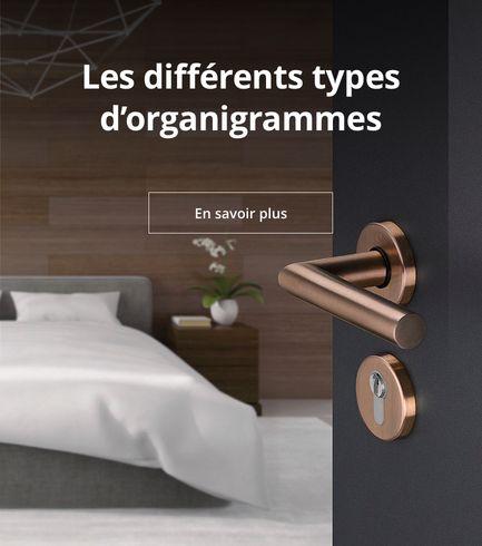 Différents types d'organigrammes